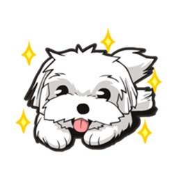 Maltese Dog Sticker