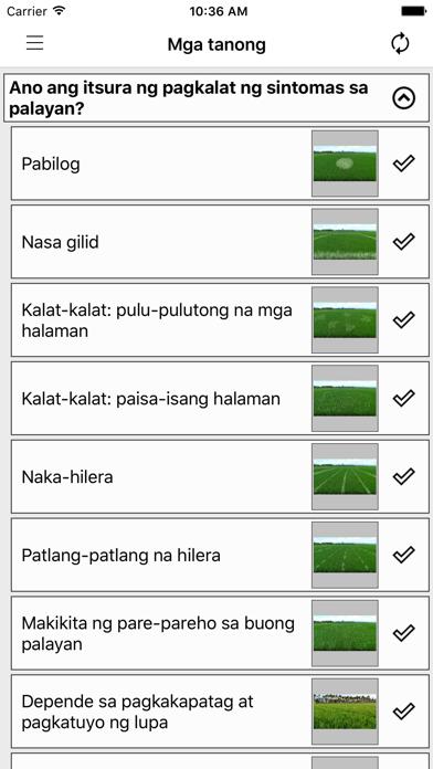 Rice Doctor Tagalogのおすすめ画像2