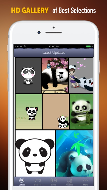 Panda Wallpapers HD- Backgrounds and Art Pictures