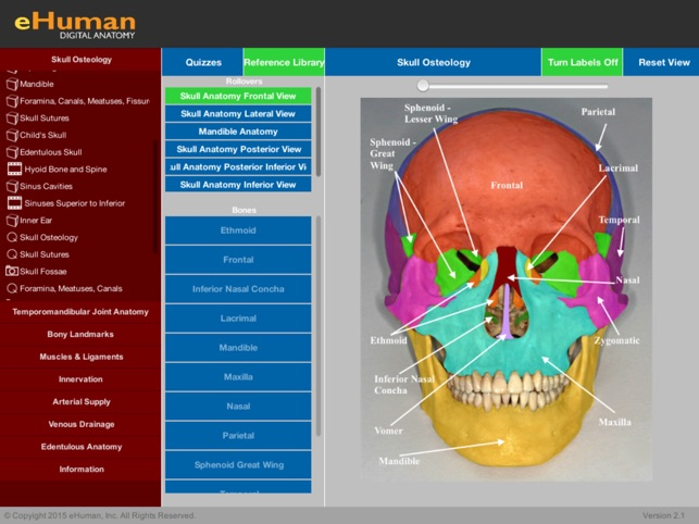 Ehuman Head And Neck Anatomy On The App Store