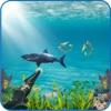 鮫 狩猟 冒険