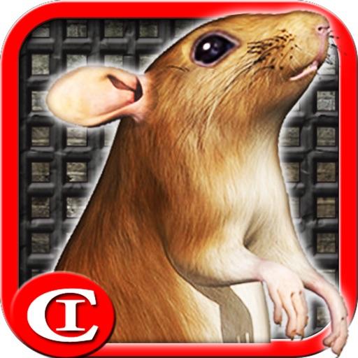 Sewer Rat Run 3D Free