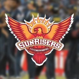 Sunrisers Hyderabad IPL7