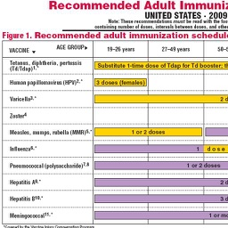 CDC Vaccine Schedule for Adults