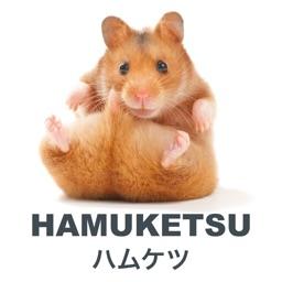 Hamuketsu - ハムケツ