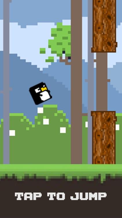 Bird Watch Game Free