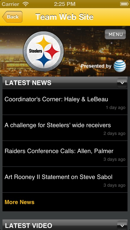 Steelers Fan Static screenshot-3