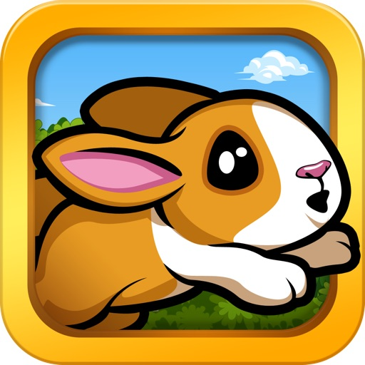 Pet Dash HD - Racing Animals!