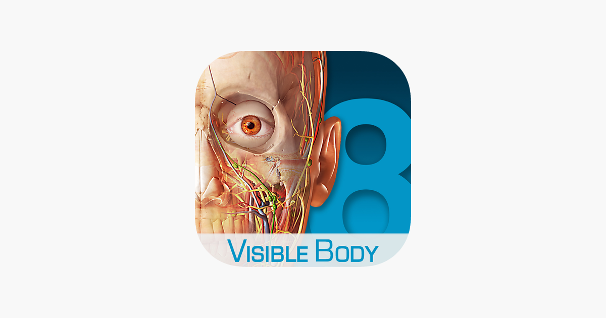 Human Anatomy Atlas 3d Anatomical Model Of The Human Body On The