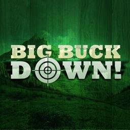 BigBuckDown!