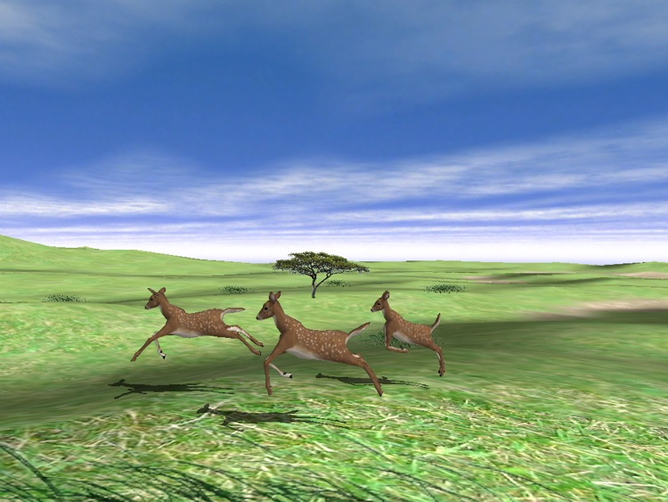 Wildlife Animal Zoo Simulator Game-3D Virtual Pets screenshot-4