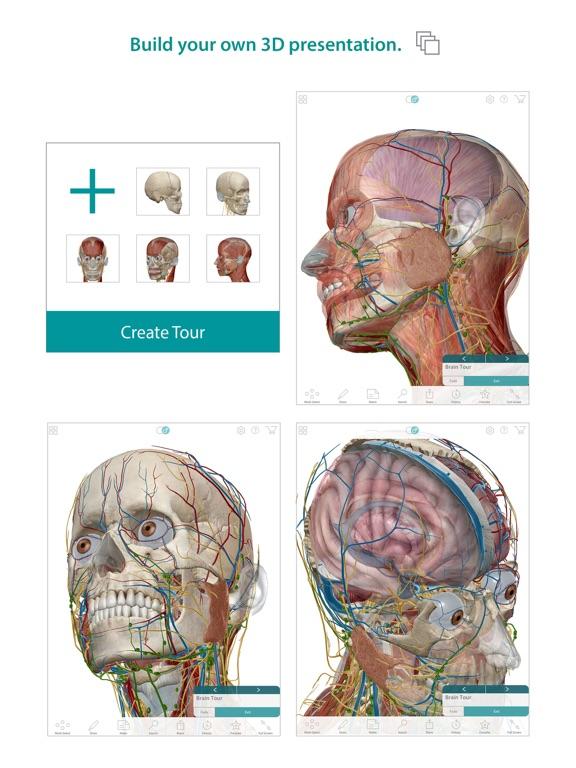 Human Anatomy Atlas – 3D Anatomical Model of the Human Body-ipad-2