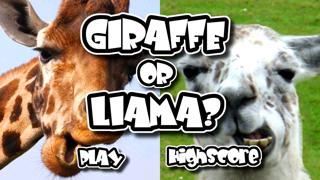 Giraffe Or Llama? screenshot one