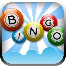 Activities of Bingo Match