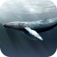 Codes for Guess for Aquatic Species at Risk Quiz Game Hack