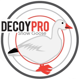 DecoyPro - Snow Goose Hunting Diagrams