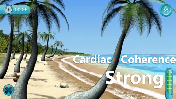 Cardiac Coherence : The Beach
