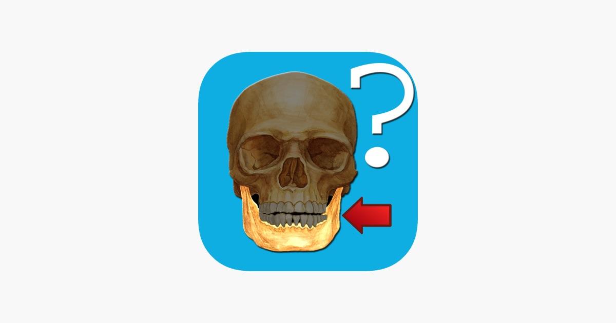 Anatomie Fragespiel im App Store