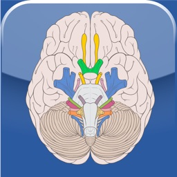 Cranial Nerves ~ Pocket Clinical Resource