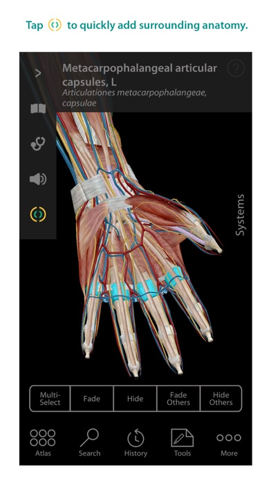 Human Anatomy Atlas – 3D Anatomical Model of the Human Body-1