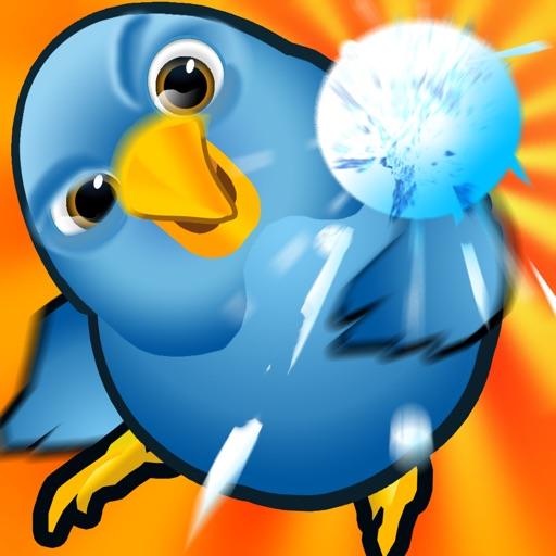 Birddle