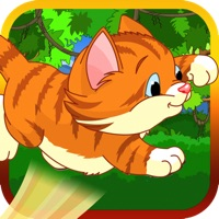 Codes for Bouncy Cat Hack