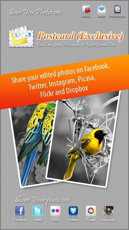 Photo Splash FX - editor with multiple color stroke to splash, colorize, recolor and share on instagram, Facebook & dropbox screenshot-3