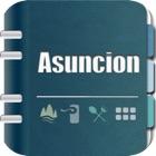 亚松森指南 icon
