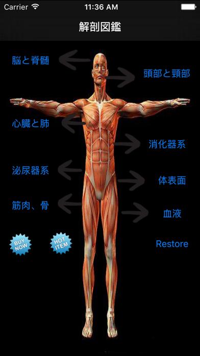 解剖図鑑 ScreenShot0