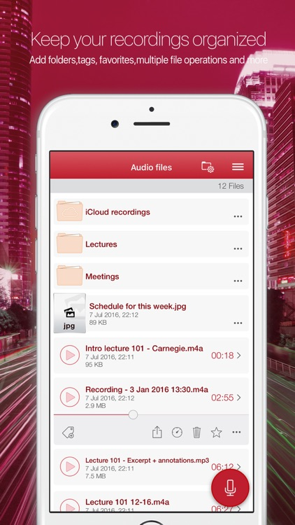 Audiologic voice and audio recorder