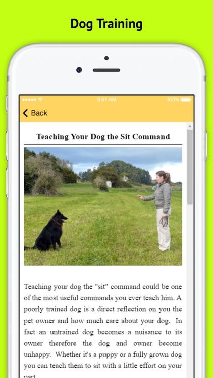 Dog Obedience Training - Basic Commands screenshot-3