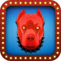 Codes for Red Dog Poker Hack
