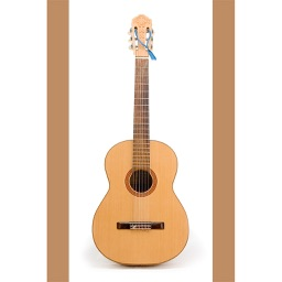 The Acoustic Guitar Tuner