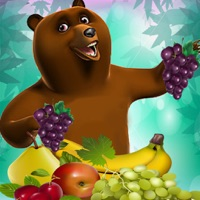 Codes for Hungry Fruit Bear Harvest Blast Matching Puzzler Games Free Hack