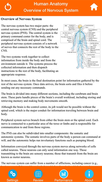 Human Anatomy : Nervous System screenshot-4