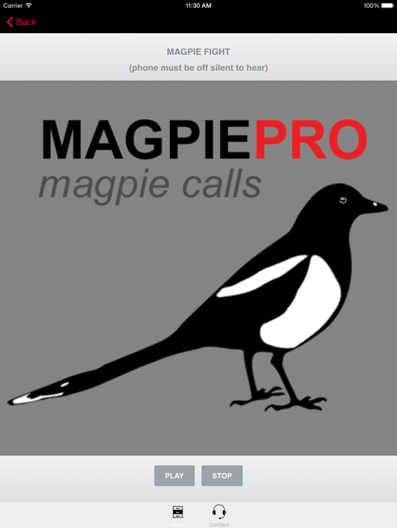 REAL Magpie Calls for Hunting -Magpie Sounds! + (ad free) BLUETOOTH COMPATIBLE