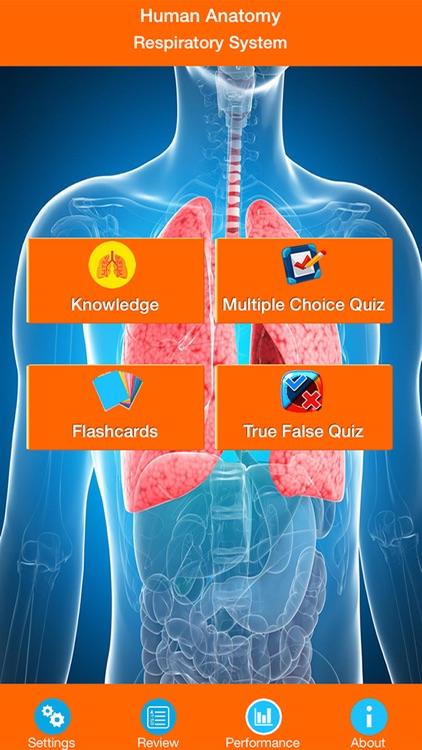 Human Anatomy Respiratory System By Coskun Cakir