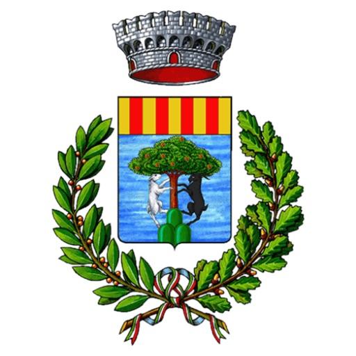 VIVI Tonara