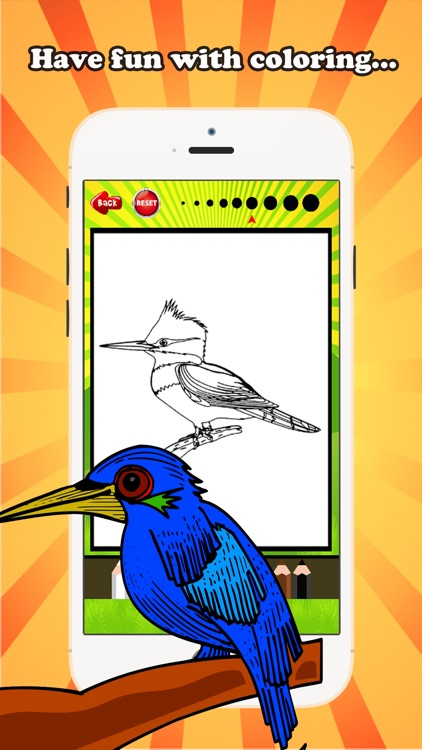 Bird Coloring Book for children age 1-10: Drawing & Coloring page games free for learning skill screenshot-3