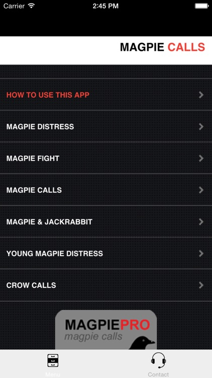 REAL Magpie Hunting Calls - REAL Magpie CALLS & Magpie Sounds!