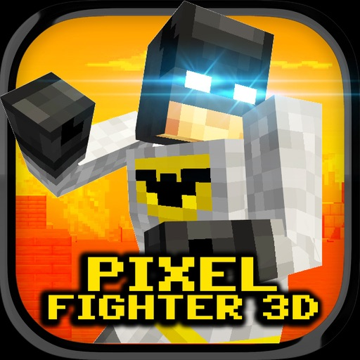 Pixel Fighter 3D