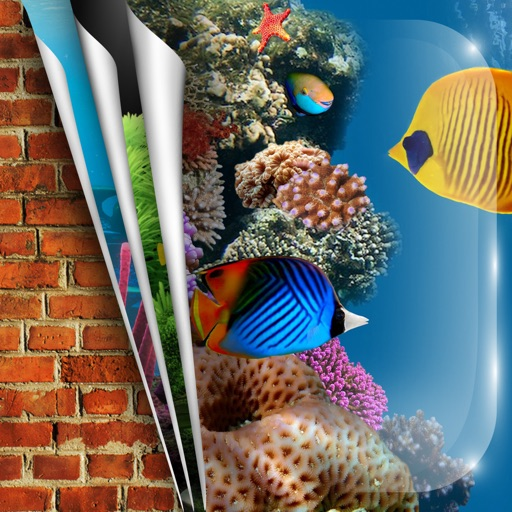 Aquarium Hd Wallpapers Backgrounds Set Fish Tank Pictures On Your Home Screen By Milan Ilic