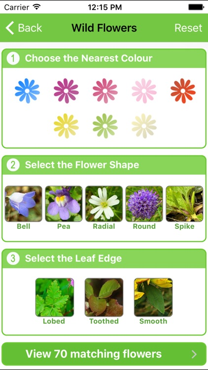 Mountain Flora & Fauna