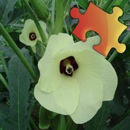 Medicinal Plants Jigsaw Puzzles