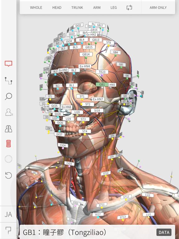 3D Acupointのおすすめ画像2