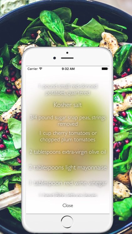 Healthy & Quick Recipes screenshot-3