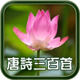 每日必听国学 唐诗300首(有声图文典藏版)