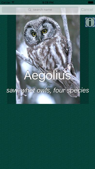 Owl Dictionary Pro