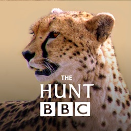 The Hunt - BBC Earth - Natural History Interactive TV Series