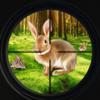 Rabbit Hunting Game